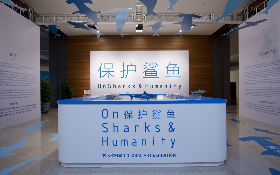 On Sharks & Humanity: The Exhibition In Pictures